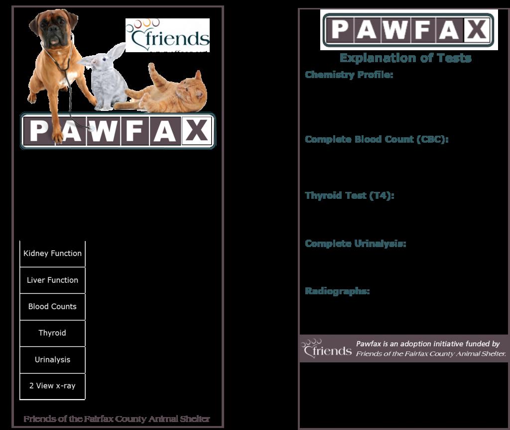 Pawfax-Brochure