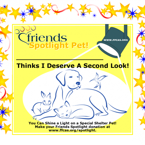 spotlight-pet-sign