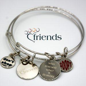 Friends silver charm bracelet