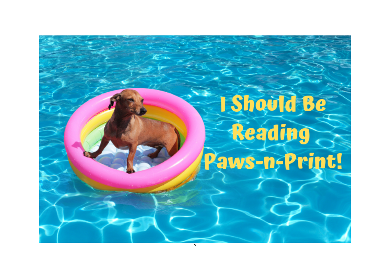2019 Summer Edition of Paws-n-Print