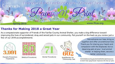 Read our 2019 Spring Newsletter